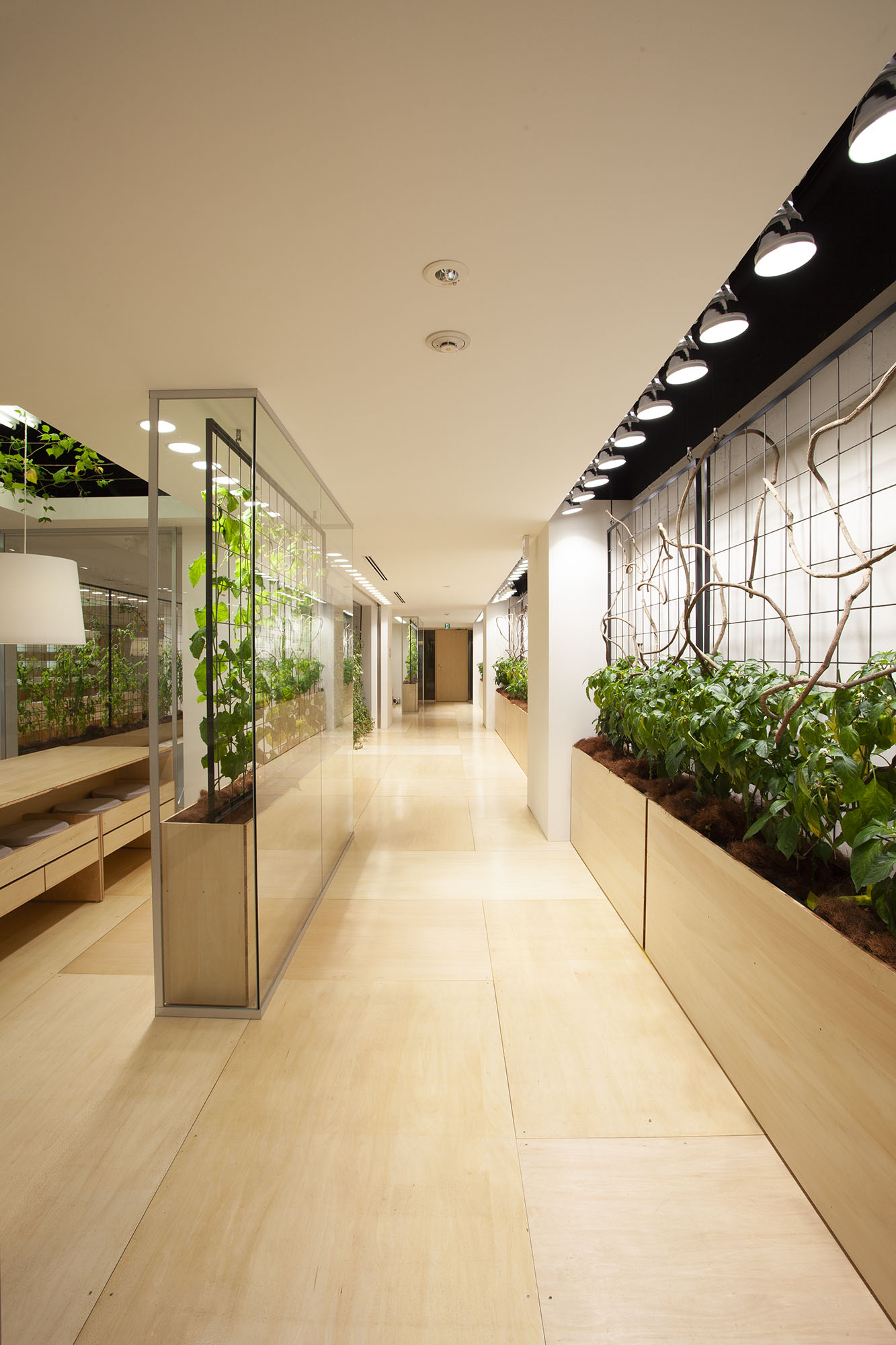 Pasona Urban Farm Konodesigns